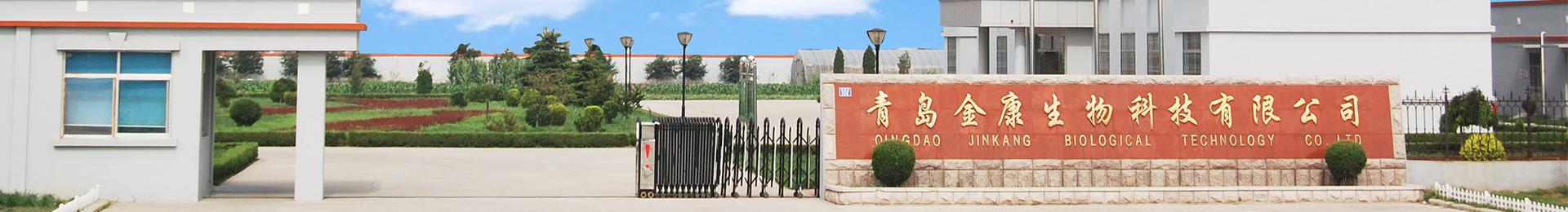 金康研究所